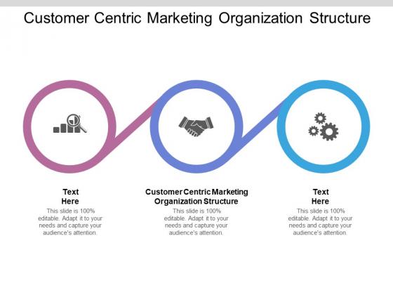 Customer Centric Marketing Organization Structure Ppt PowerPoint Presentation Portfolio Slide Cpb