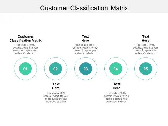 Customer Classification Matrix Ppt PowerPoint Presentation File Background Cpb