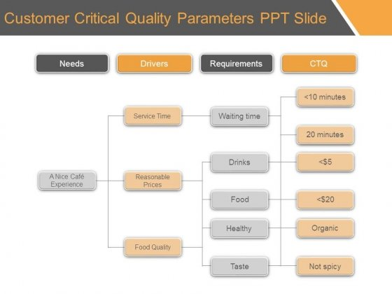 Customer Critical Quality Parameters Ppt Slide