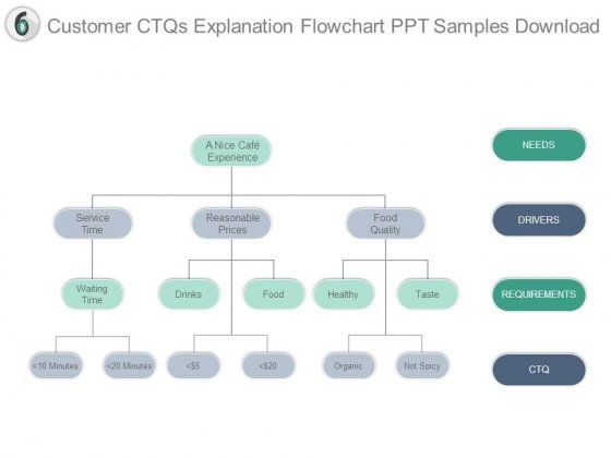 Customer Ctqs Explanation Flowchart Ppt Samples Download