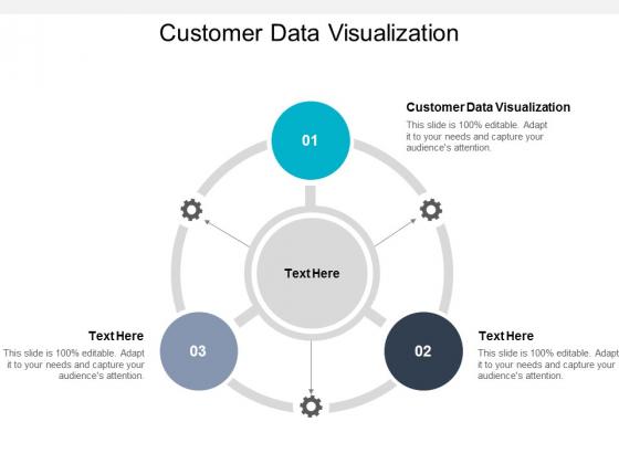 Customer Data Visualization Ppt PowerPoint Presentation Model Templates Cpb