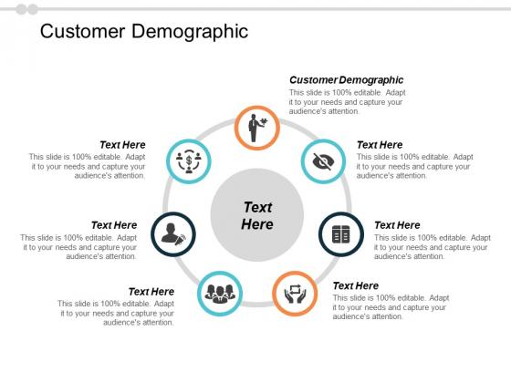 Customer Demographic Ppt PowerPoint Presentation Inspiration Tips Cpb