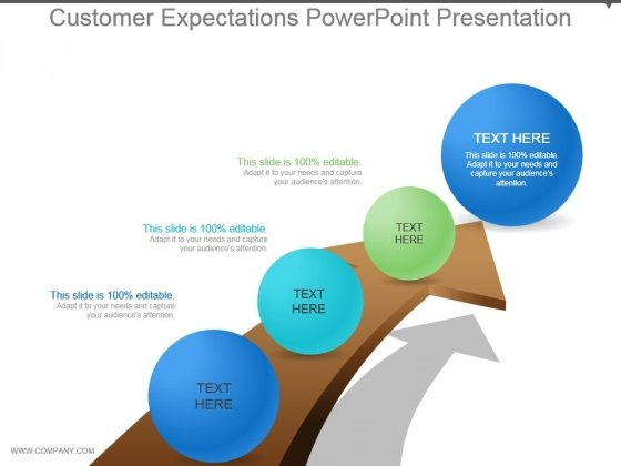 Customer Expectations Powerpoint Presentation