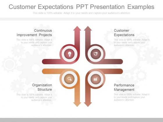 Customer Expectations Ppt Presentation Examples