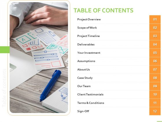 Customer Experience Interface Table Of Contents Ppt PowerPoint Presentation Summary Background Designs PDF
