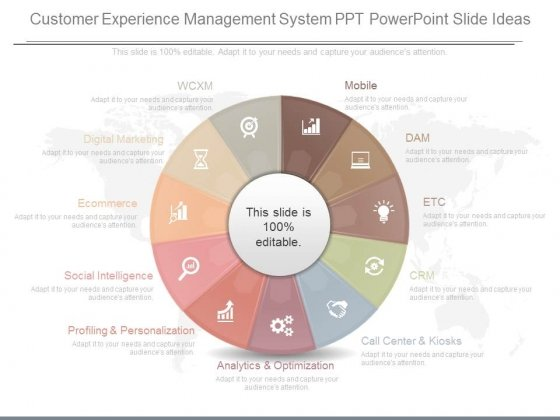 Customer Experience Management System Ppt Powerpoint Slide Ideas