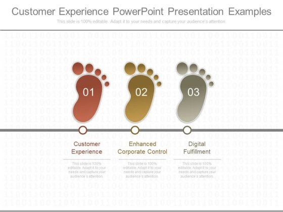 Customer Experience Powerpoint Presentation Examples