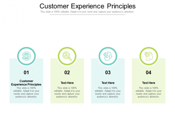 Customer Experience Principles Ppt PowerPoint Presentation Inspiration Example Topics Cpb Pdf