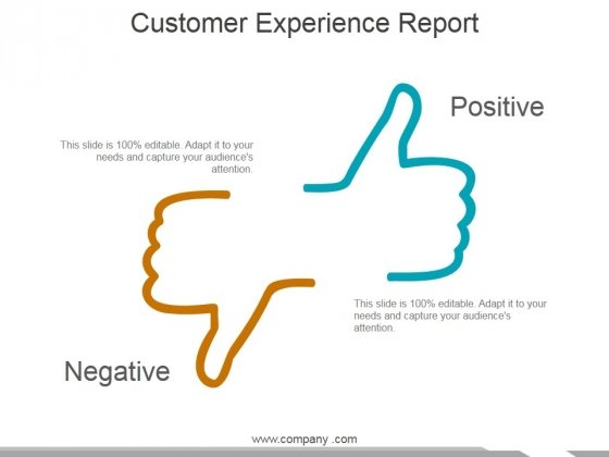 Customer Experience Report Ppt PowerPoint Presentation Infographics Portfolio