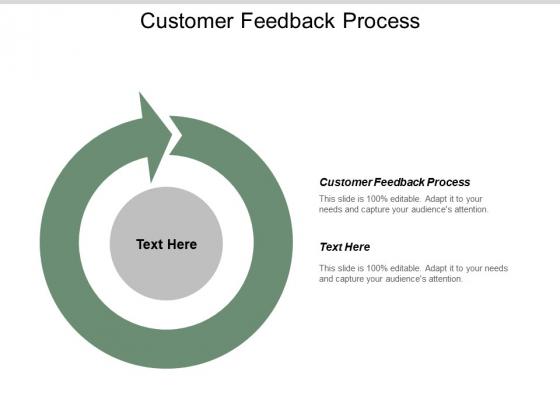 Customer Feedback Process Ppt PowerPoint Presentation Outline Portfolio Cpb