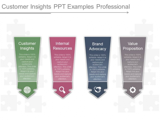 Customer Insights Ppt Examples Professional