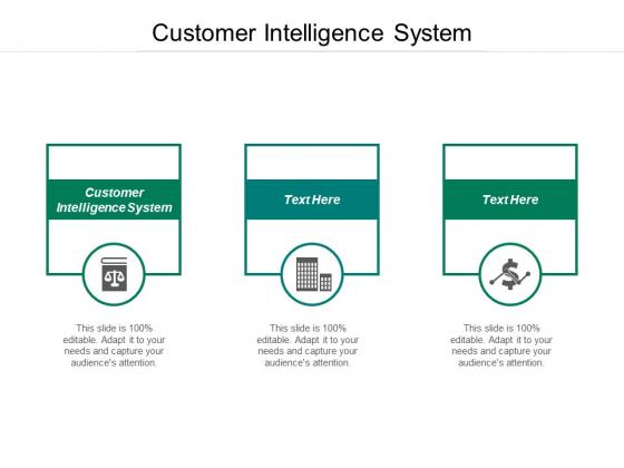 Customer Intelligence System Ppt PowerPoint Presentation Portfolio Graphics Design Cpb