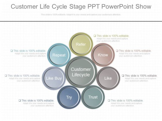 Customer Life Cycle Stage Ppt Powerpoint Show