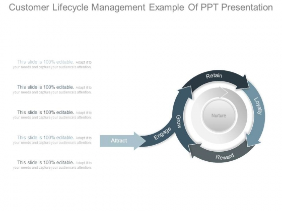 Customer Lifecycle Management Example Of Ppt Presentation