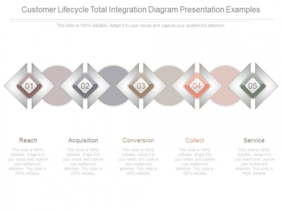 Customer Lifecycle Total Integration Diagram Presentation Examples