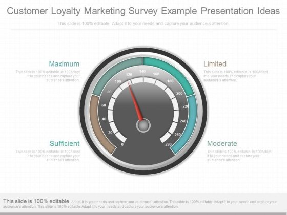 Customer Loyalty Marketing Survey Example Presentation Ideas