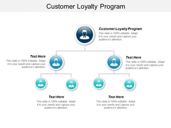 Customer Loyalty Program Ppt PowerPoint Presentation Professional Ideas Cpb