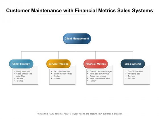 Customer Maintenance With Financial Metrics Sales Systems Ppt PowerPoint Presentation Portfolio Picture