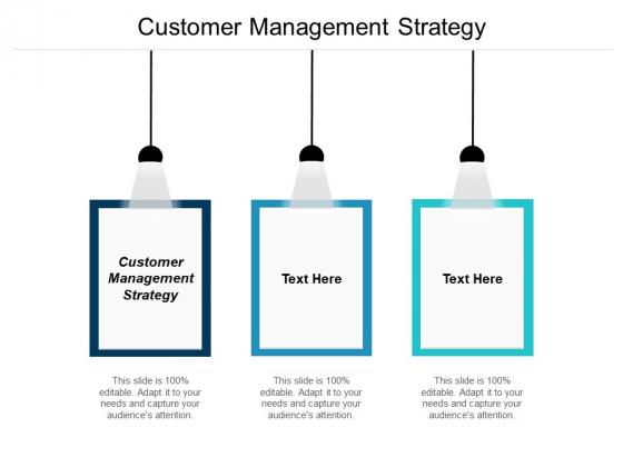 Customer Management Strategy Ppt PowerPoint Presentation Summary Mockup