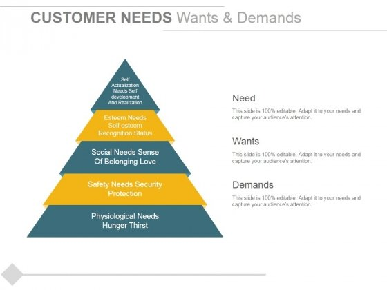 Customer Needs Wants And Demands Ppt PowerPoint Presentation Ideas Graphics