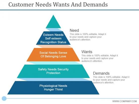 Customer Needs Wants And Demands Ppt PowerPoint Presentation Portfolio Brochure