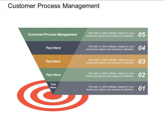 Customer Process Management Ppt PowerPoint Presentation Slide Download Cpb
