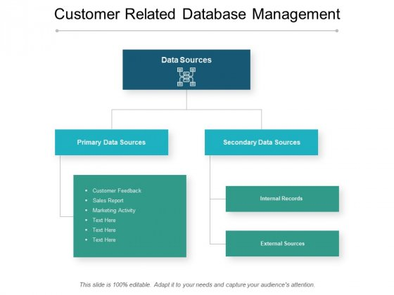 Customer Related Database Management Ppt PowerPoint Presentation Show Example