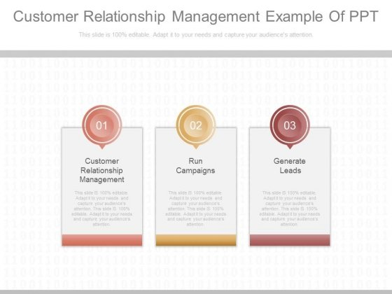 Customer_Relationship_Management_Example_Of_Ppt_1