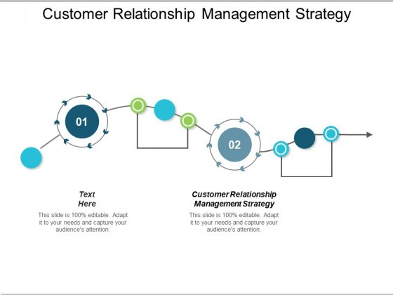 Customer Relationship Management Strategy Ppt PowerPoint Presentation Pictures Background Cpb
