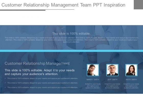 Customer Relationship Management Team Ppt Inspiration