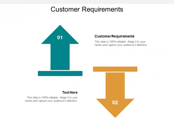 Customer Requirements Ppt PowerPoint Presentation Gallery Information Cpb