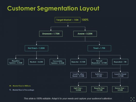 Customer Segmentation Layout Ppt PowerPoint Presentation Ideas Outfit