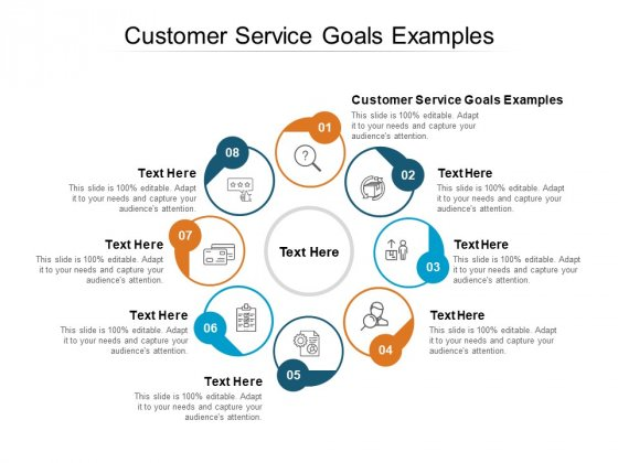 Customer Service Goals Examples Ppt PowerPoint Presentation Show Shapes Cpb