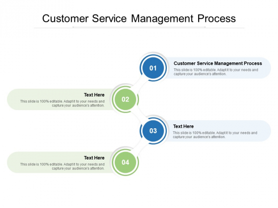 Customer Service Management Process Ppt PowerPoint Presentation Layouts Format Ideas Cpb