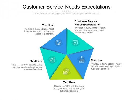 Customer Service Needs Expectations Ppt PowerPoint Presentation Infographic Template Sample Cpb