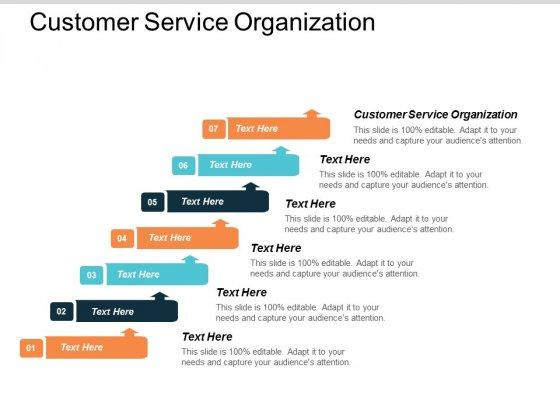 Customer Service Organization Ppt Powerpoint Presentation Gallery Elements Cpb