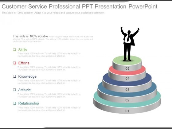 customer service professional ppt presentation powerpoint