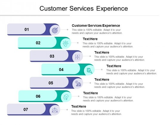 Customer Services Experience Ppt PowerPoint Presentation Gallery Deck Cpb