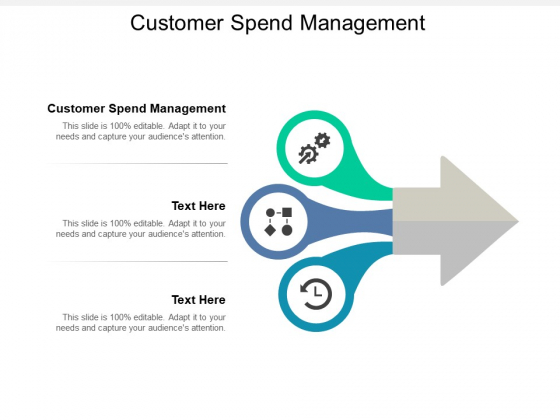 Customer Spend Management Ppt PowerPoint Presentation Pictures Designs