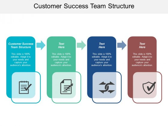 Customer Success Team Structure Ppt PowerPoint Presentation Visual Aids Backgrounds Cpb
