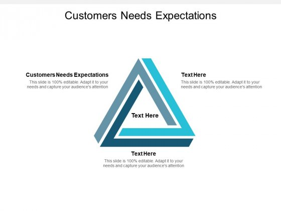 Customers Needs Expectations Ppt PowerPoint Presentation Visual Aids Infographic Template Cpb