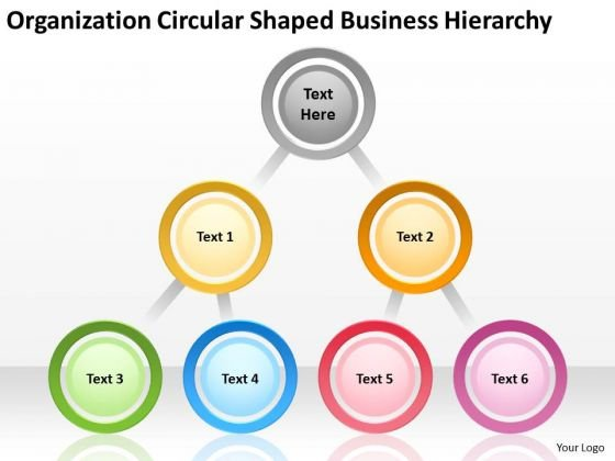 Circular Shaped Business Hierarchy Ppt Plan Consultant PowerPoint Templates
