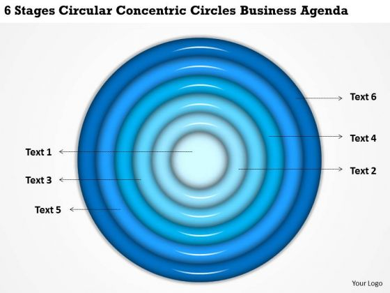 Concentric Circles Business Agenda Examples Of Plan Outline PowerPoint Slides