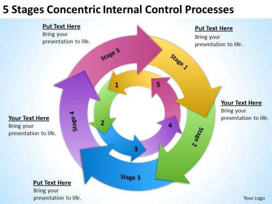 Concentric Internal Control Processes Business Plan Template