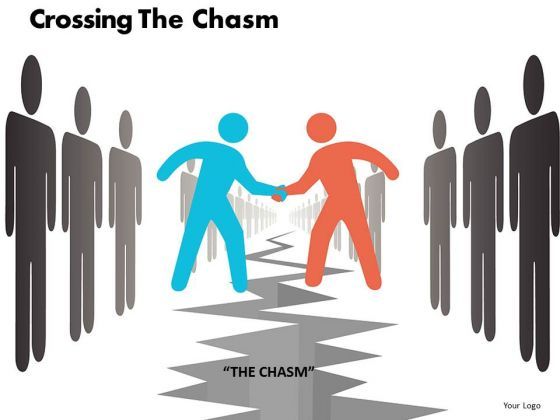 Crossing The Chasm Ppt 12