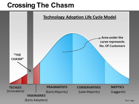 Crossing The Chasm Ppt 3