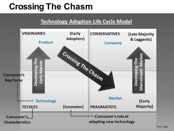 Crossing The Chasm Ppt 8