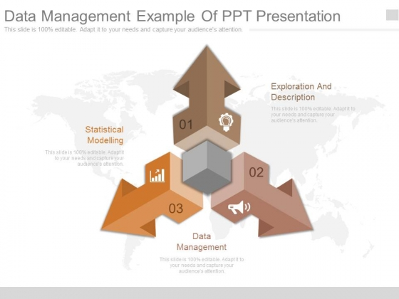 Data Management Example Of Ppt Presentation