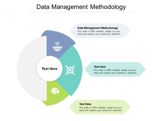 Data Management Methodology Ppt PowerPoint Presentation Outline Format Cpb