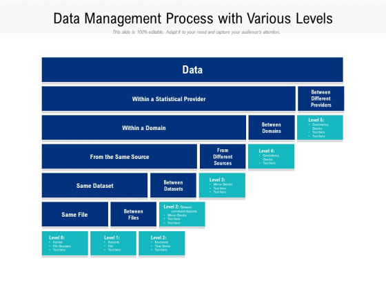 Data_Management_Process_With_Various_Levels_Ppt_PowerPoint_Presentation_File_Sample_PDF_Slide_1